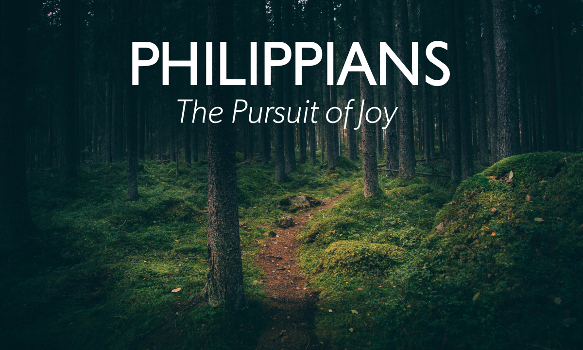 I Will Pursue Humility by…